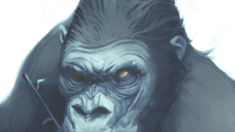 Démonstration – Dessiner un portrait animal #5