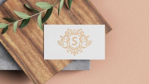 Groupe SAJECE – Design de marque